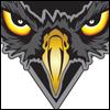 falcons_2013_001
